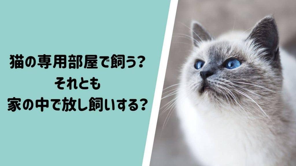 を 飼う メリット 猫